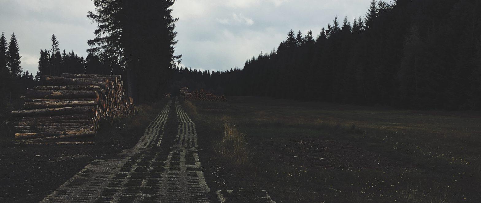 Betonen weg door landschap